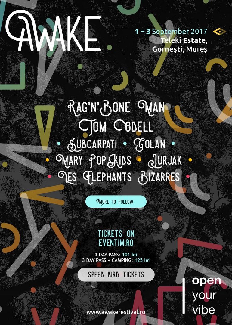 AWAKE Festival OutInMures