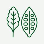 Green_Kitchen_OutInMures