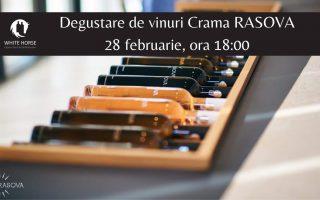 degustare vin crama rasova
